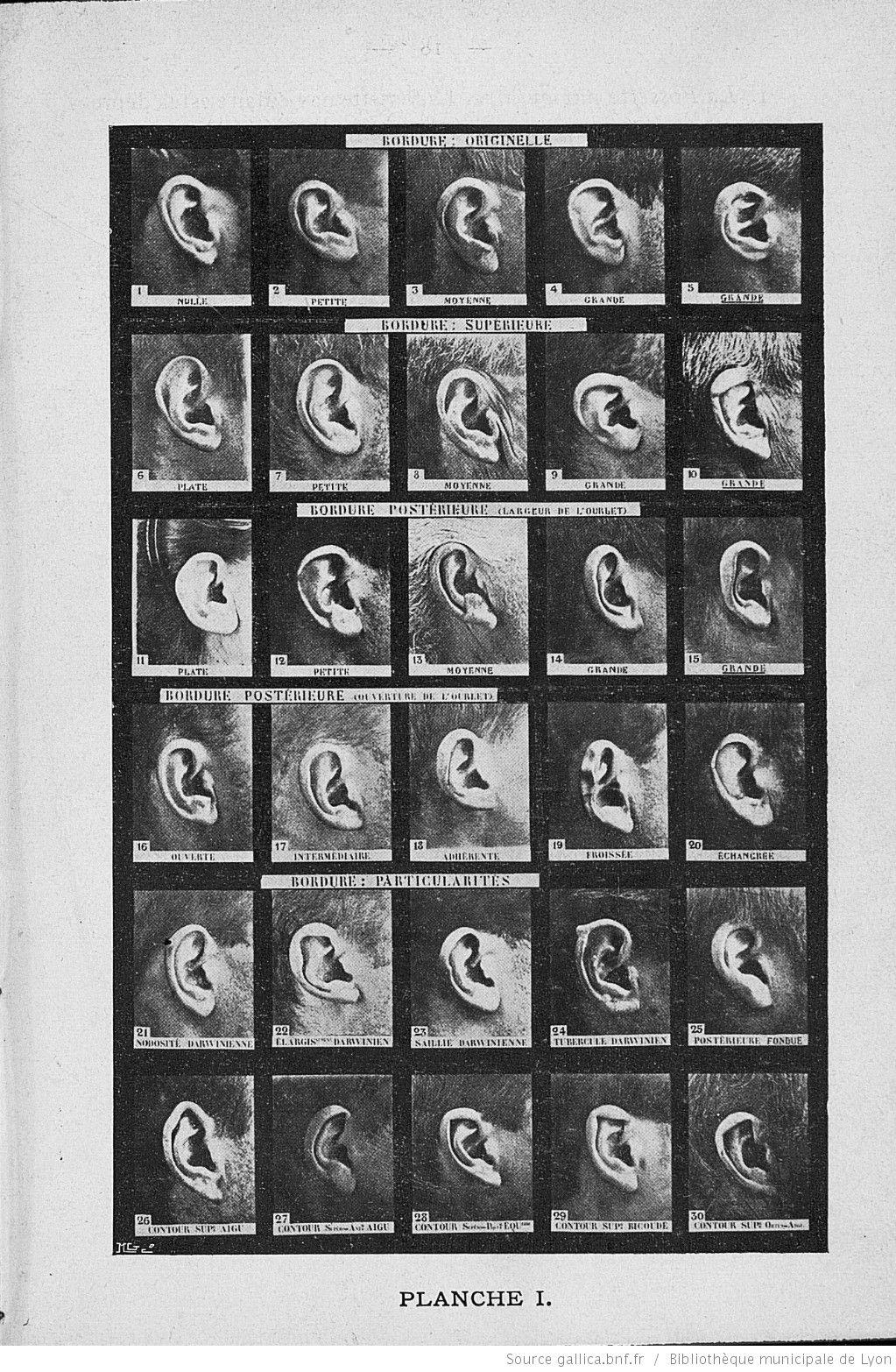 Manuel Du Portrait Parle Methode Alphonse Bertillon A L Usage De La Police Avec Vocabulaire Francais Vocabulaire Francais Vocabulaire Apprendre L Anglais