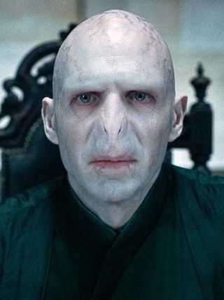 Learn Something New Harry Potter Characters Voldemort Lord Voldemort