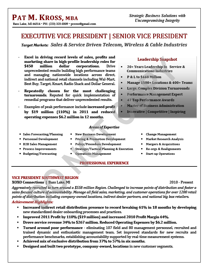 Sample Cto Resume Executive Resume Sample Evpvp  Sales Resume Sample Page 1 .
