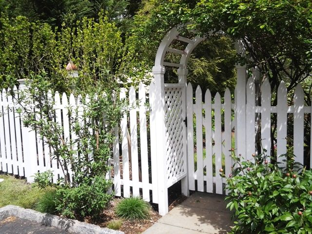 White Picket Fence and Arbor
