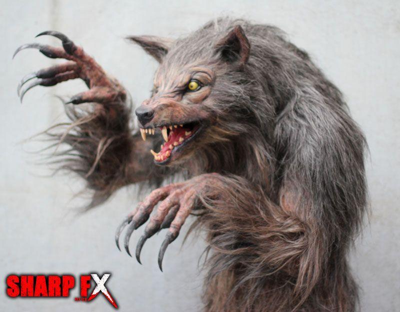 bad moon werewolf   Bad Moon Rising on Pinterest   Werewolves, Wolves and London