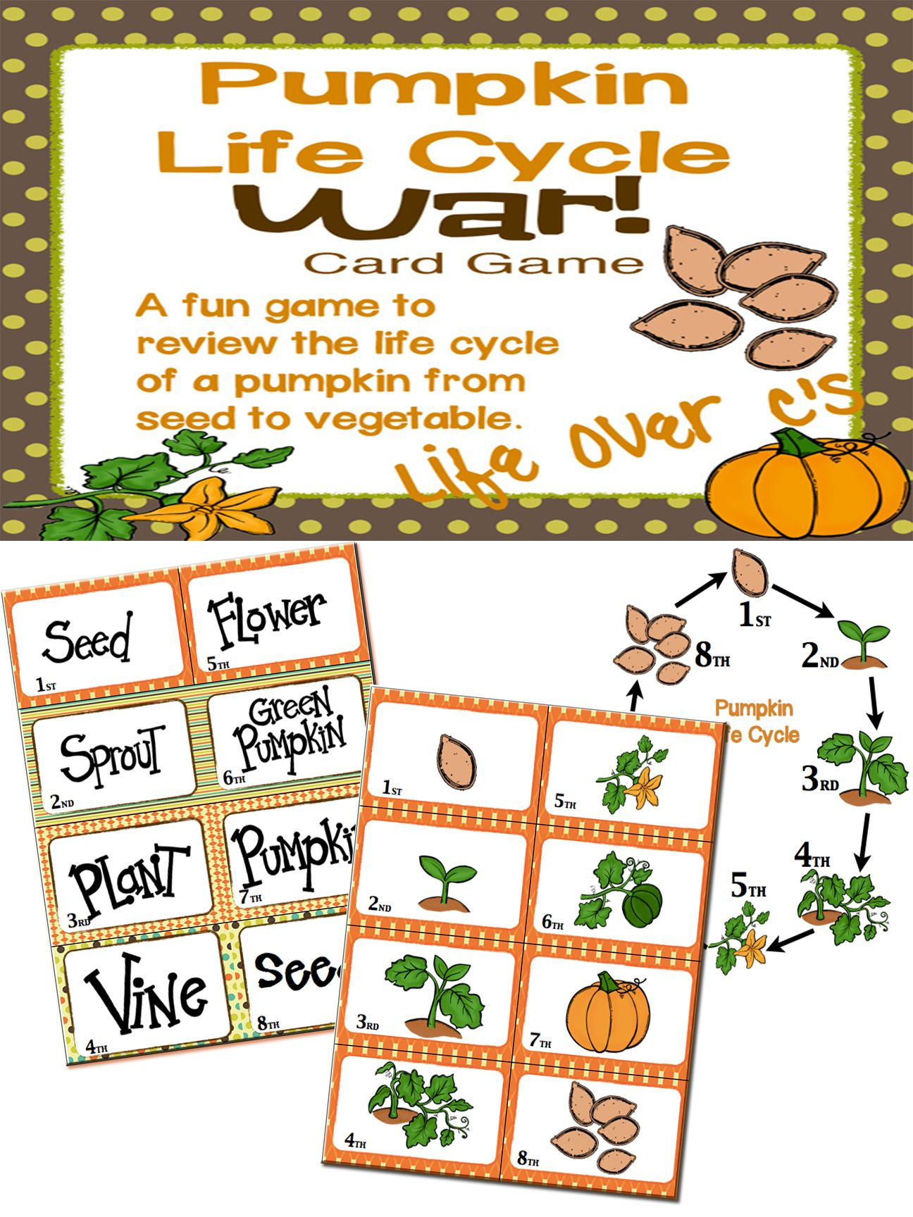 Sequencing With Pumpkin Life Cycle War Card Game Center