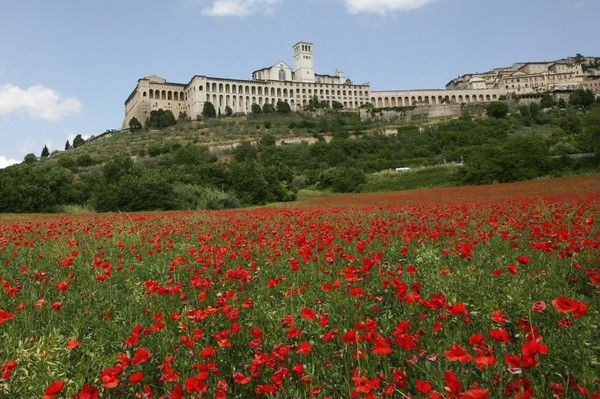 Assissi- the most beautiful town in Italy
