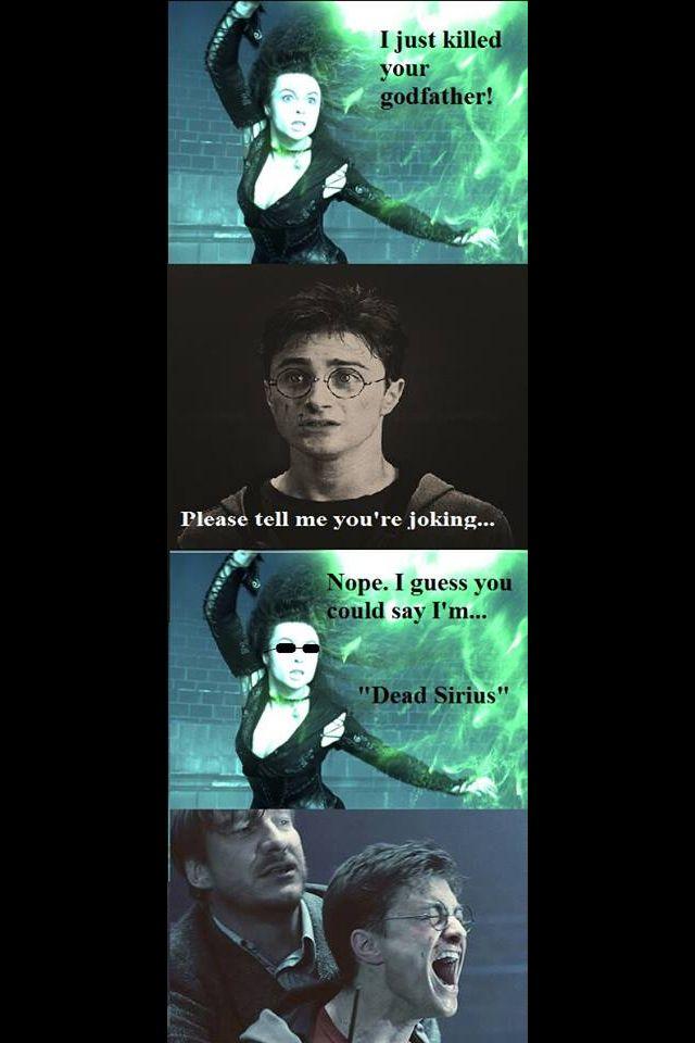 Harry Potter Joke Harry Potter Puns Harry Potter Funny Harry