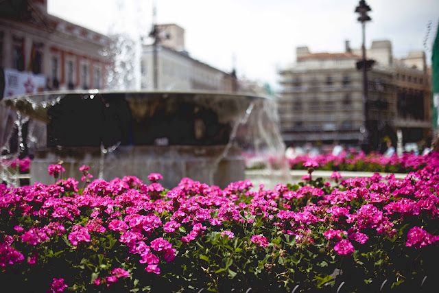 plaza del sol. madrid. spain.