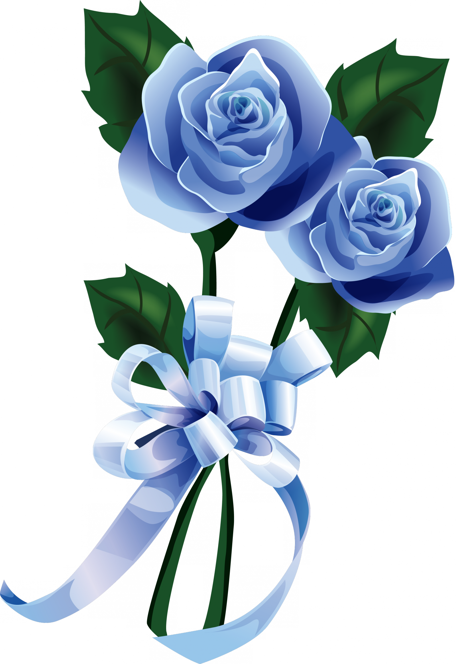 roses_bleux.png 1 600×2 333 пиксел.