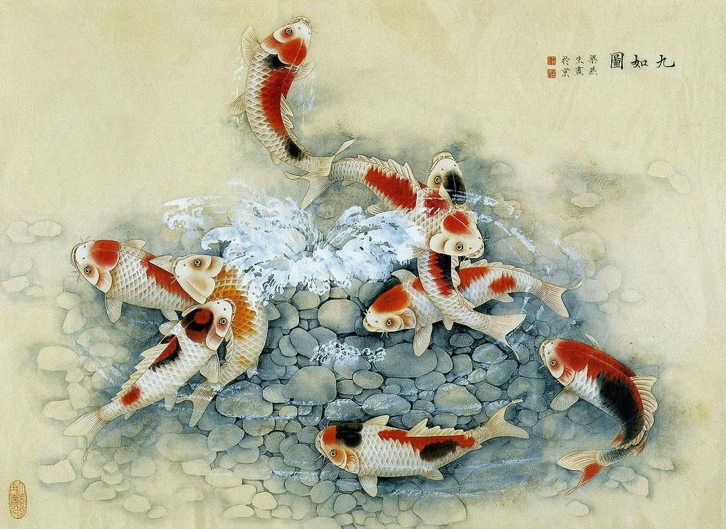 for Koi artwork on canvas