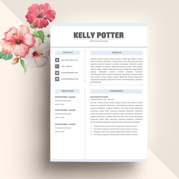 Resume Template CV Resume templates, Resume and Professional resume - executive resume design