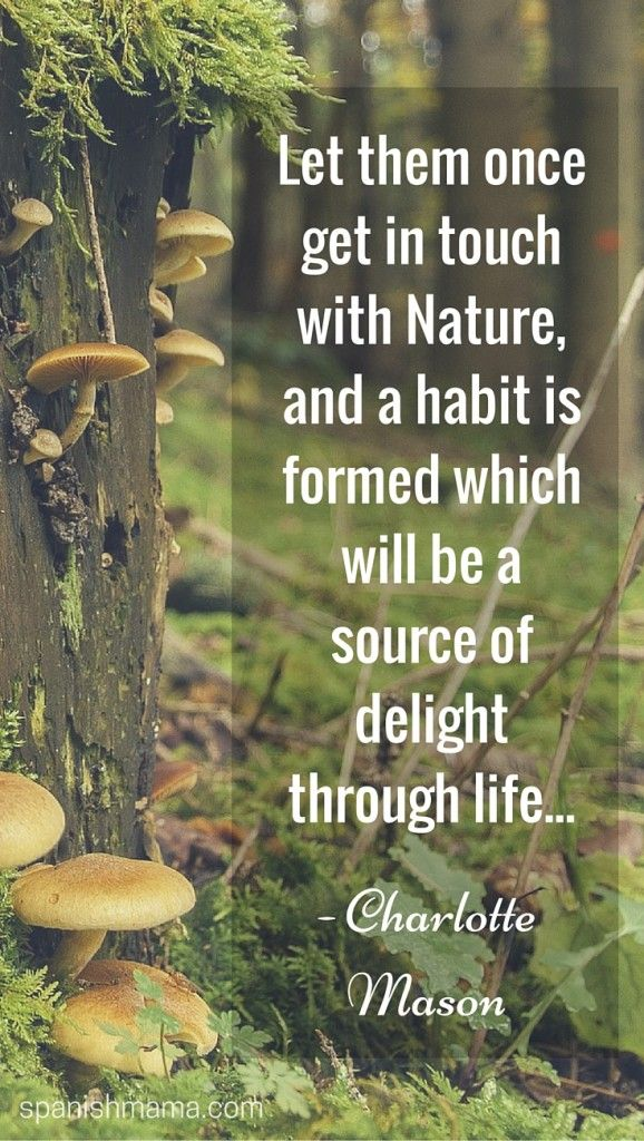 Gardening Quotes For Kids : gardening, quotes, Bugs,, Dirt,, Gardening, Kids,, Nature, Quotes,, Quotes