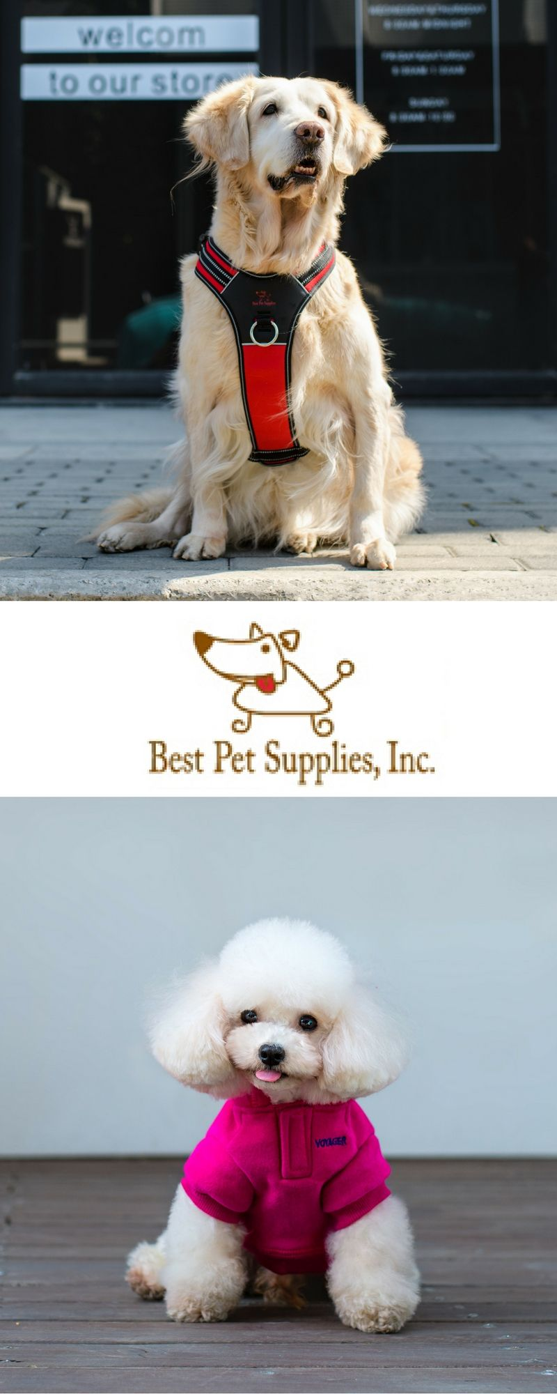 The World S Best Pet Supplies Now Available On Amazon Pets Pet Supplies Online Pet Supplies