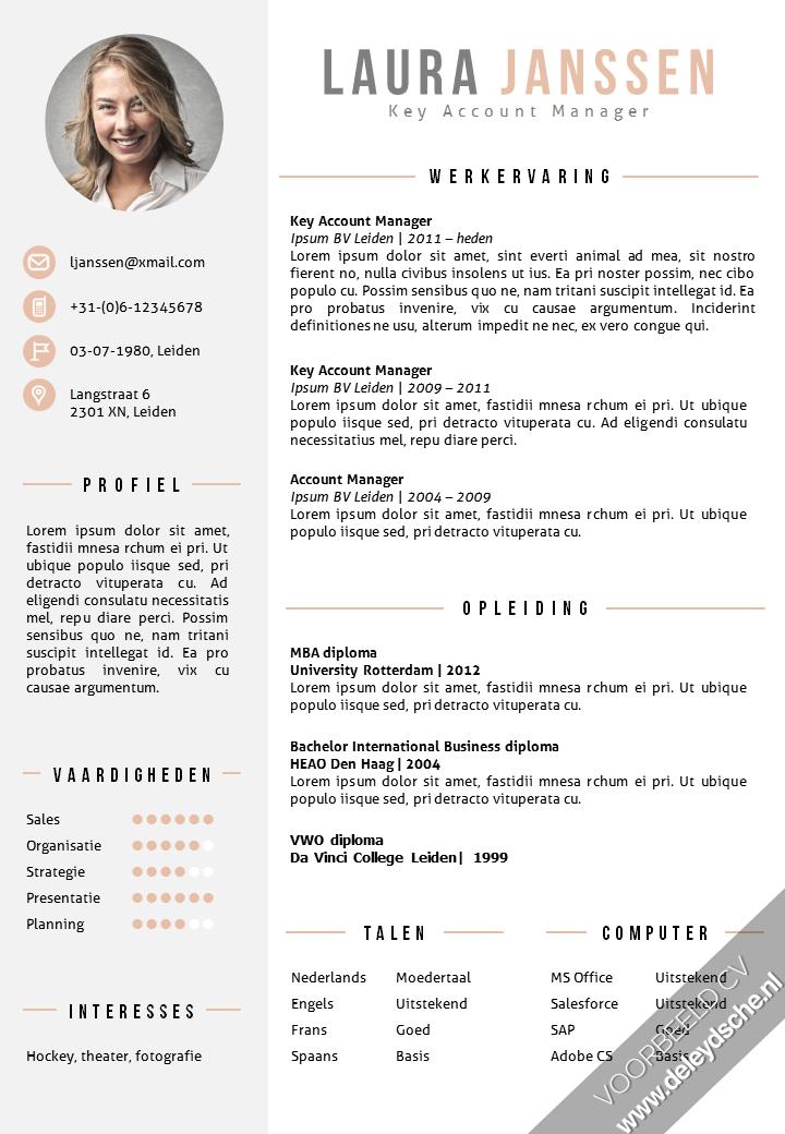 Cv Template Nederlands Resume Format Cv Sjabloon Cv Lay Out Creatief Cv Ontwerp