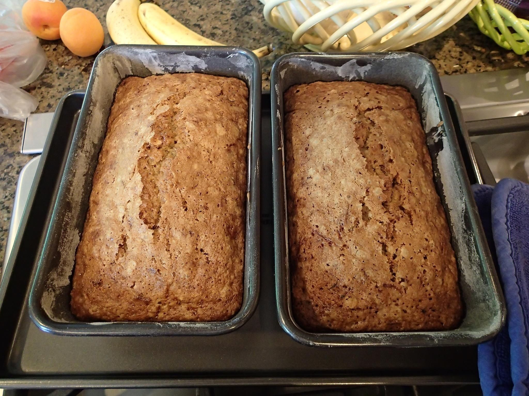 Best zucchini bread ive ever had i modified paula deens recipe at best zucchini bread ive ever had i modified paula deens recipe at httpfoodnetworkrecipespaula deenzucchini bread recipeindexml i forumfinder Choice Image