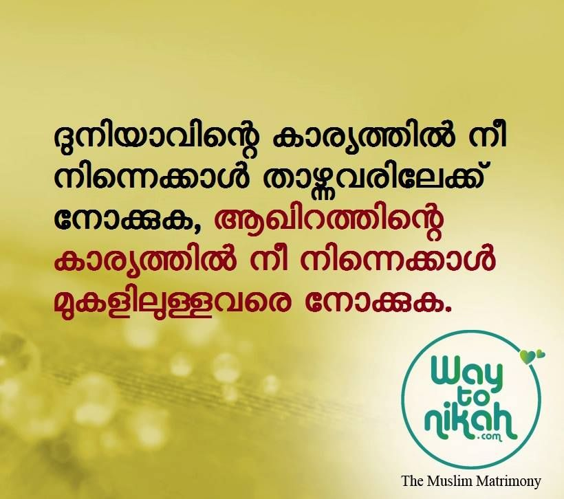 1000 Best Malayalam Quotes Images മഹത വചനങ ങൾ Way To Nikkah Islamic Quotes Malayalam Quotes Image Quotes Islamic Quotes