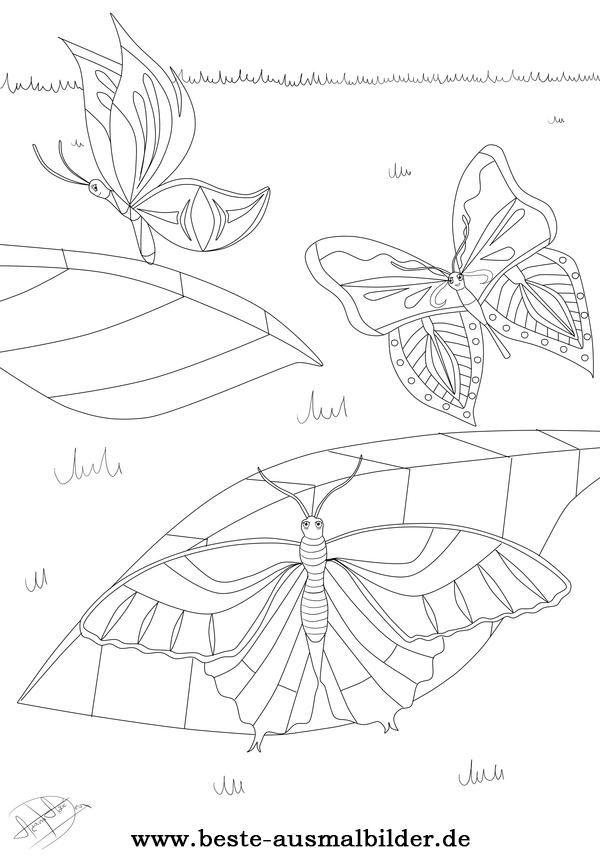 Ausmalbild Schmetterling | butterfly coloring | Pinterest ...