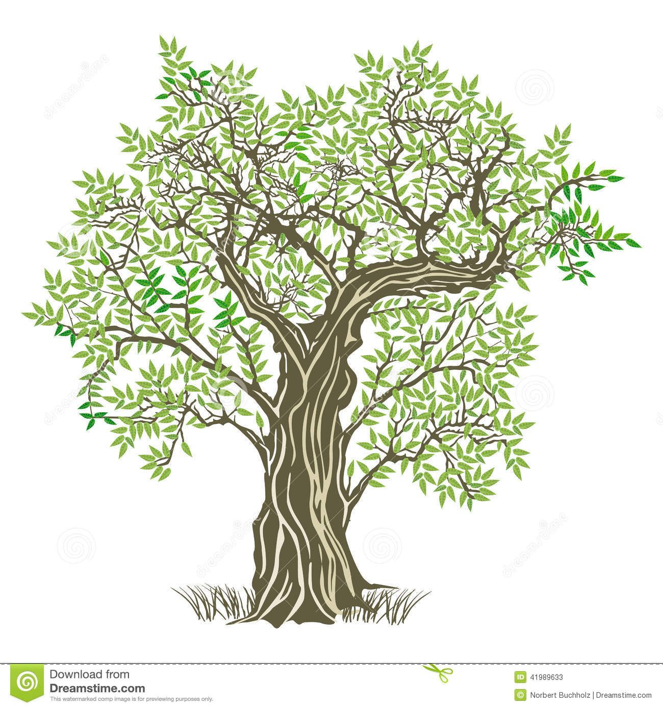 tree image graphic - Google Search | Tree Graphics | Pinterest
