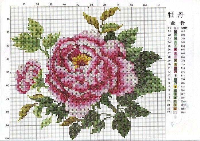 Gallery.ru / Фото #100 - розы разные - irisha-ira