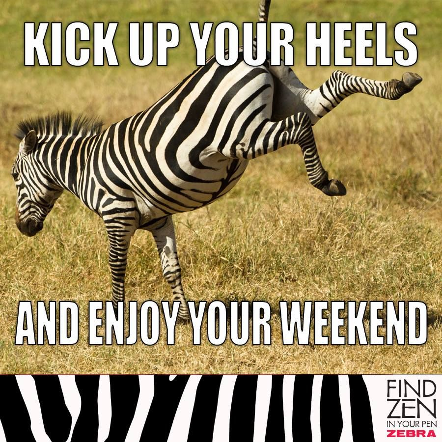 To Do Tgif Zebra Inspirational Quotes Enjoy Your Weekend