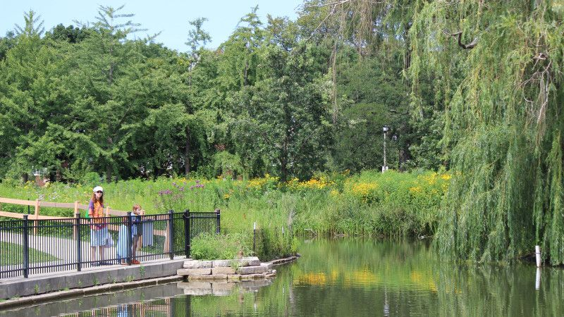 7 best chicago parks for your next family picnic chicago