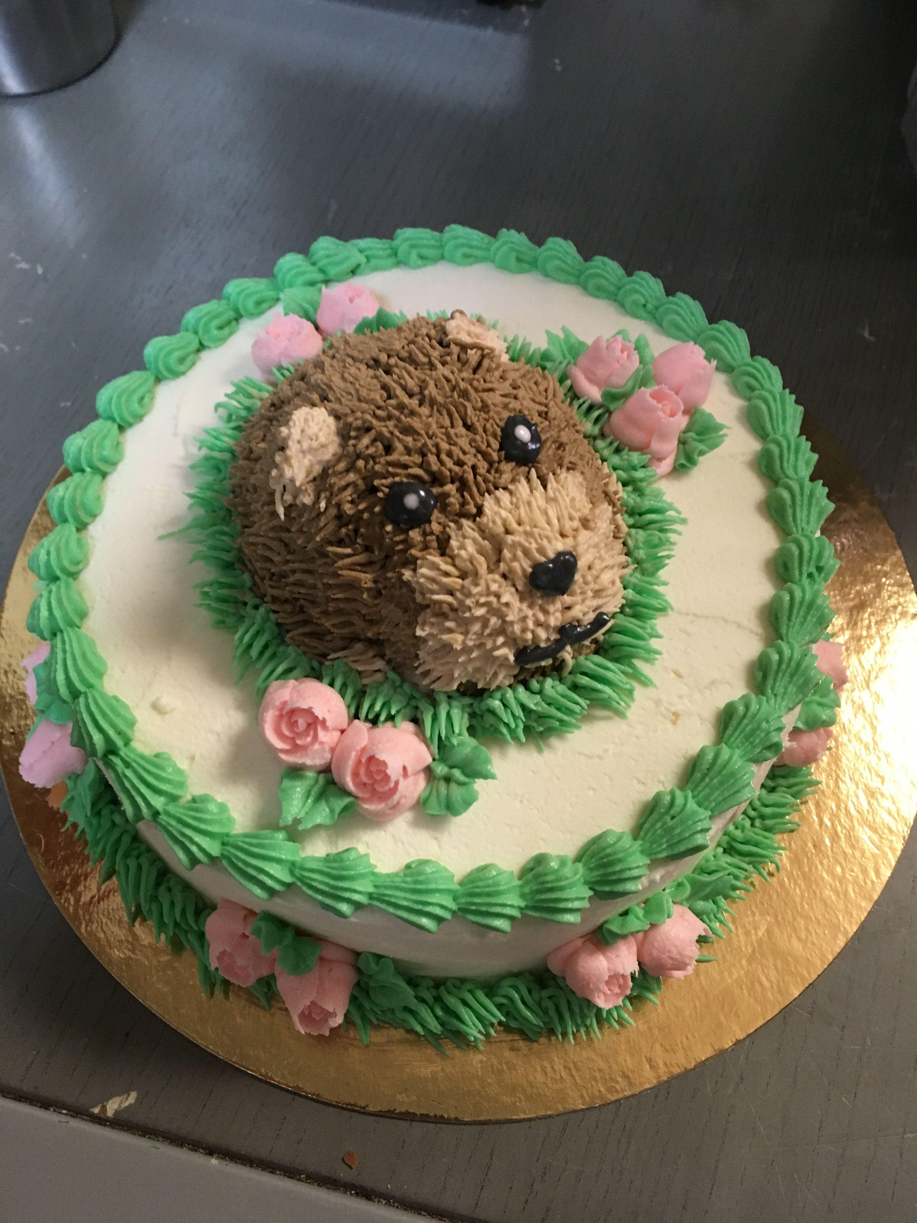 Groundhog Day Themed Birthday Cake