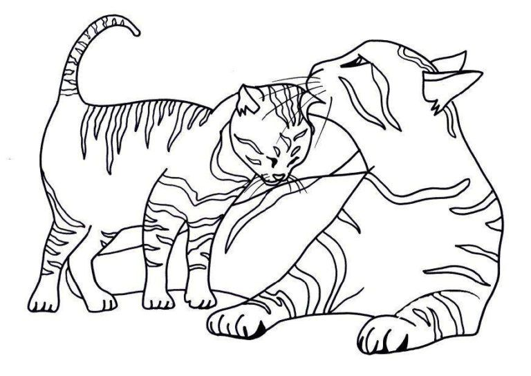 Katzen Ausmalbilder Ausmalbilder Kinder Fur Malvorlagen Malvorlage Katze Ausmalbilder Katzen Malvorlagen