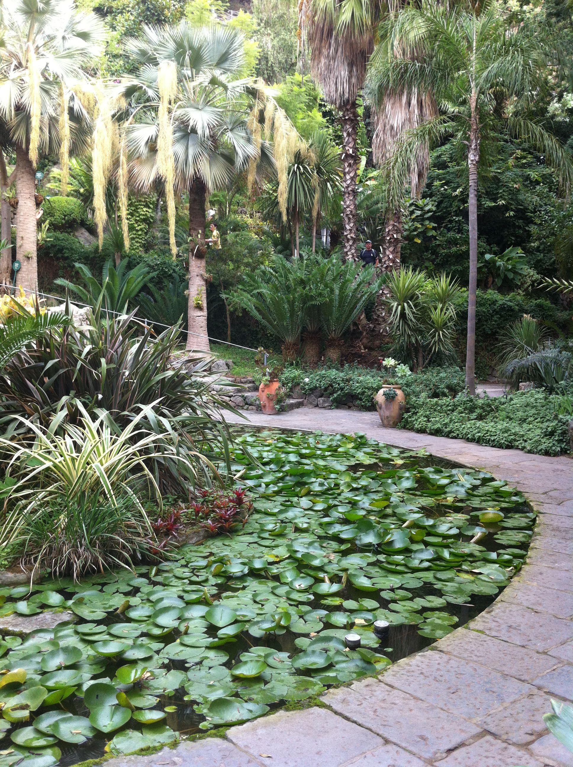 Giardini la mortella ischia italy places garden for Garden giardini