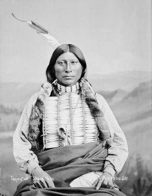 Taqau' m, Sharp Nose Arapaho Tribe