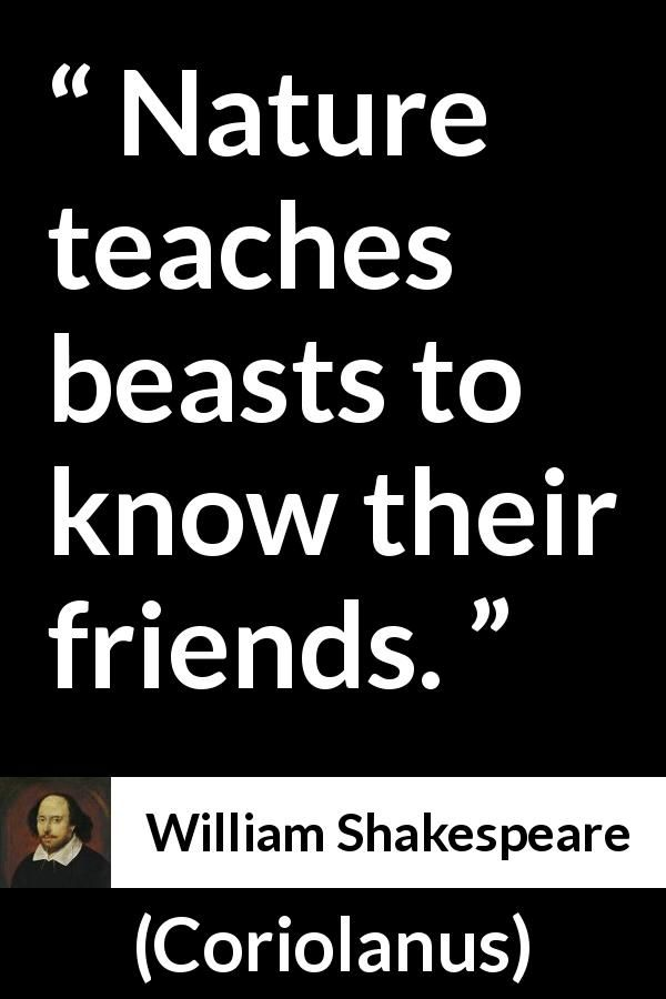 William Shakespeare Quote About Friendship From Coriolanus (1623) |  Shakespeare, Literary Quotes And Poetry Quotes