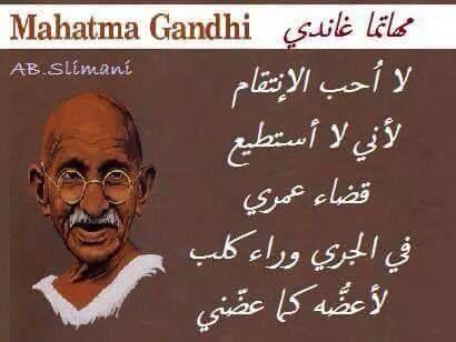 Pin By Samra Karabashi On أقوال مأثورة Beautiful Arabic Words Inspirational Words English Wisdom