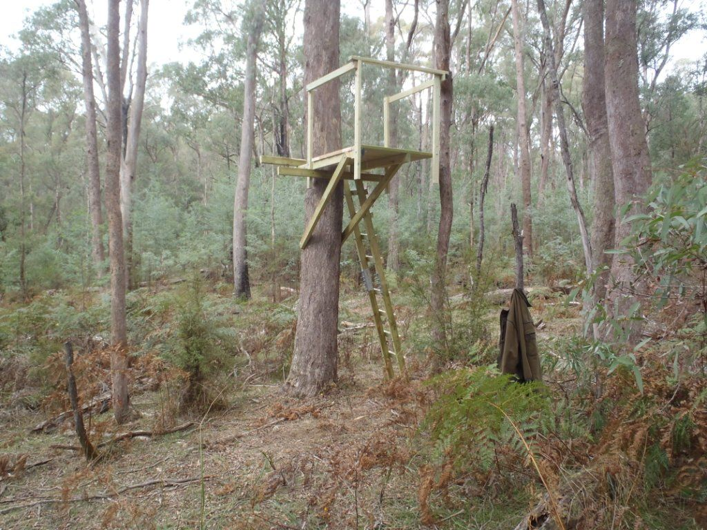 Tree stand hunting stands pinterest deer hunting and for Build your own tree stand