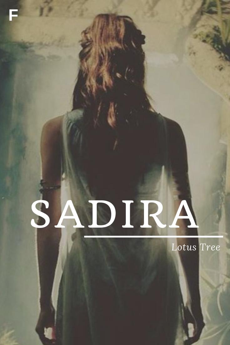 Sadira, meaning Lotus Tree, Arabic names, S baby girl