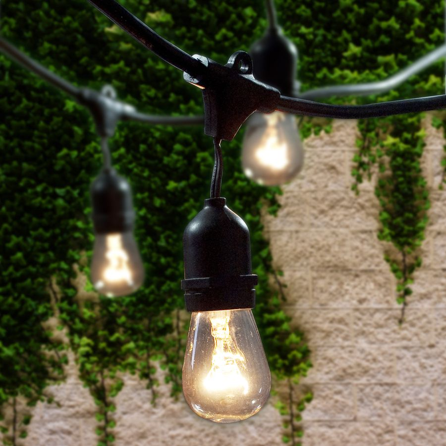 Solar String Lights Lowes Fascinating Shop Cascadia Lighting 48Ft Black Plugin String Lights At Lowes Design Ideas