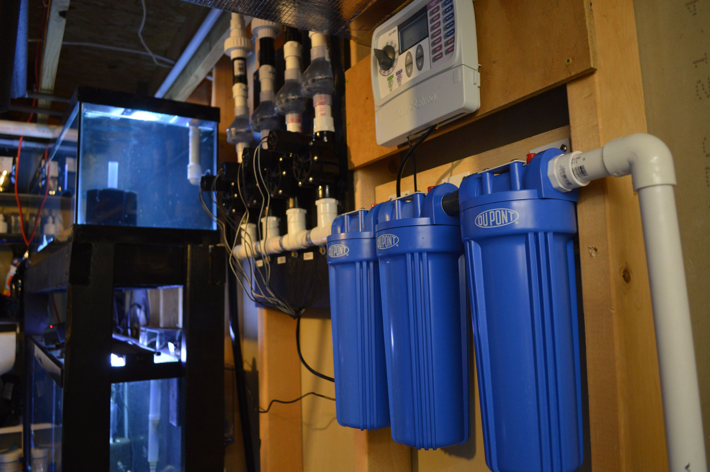 Diy fishroom auto water change system fishing room