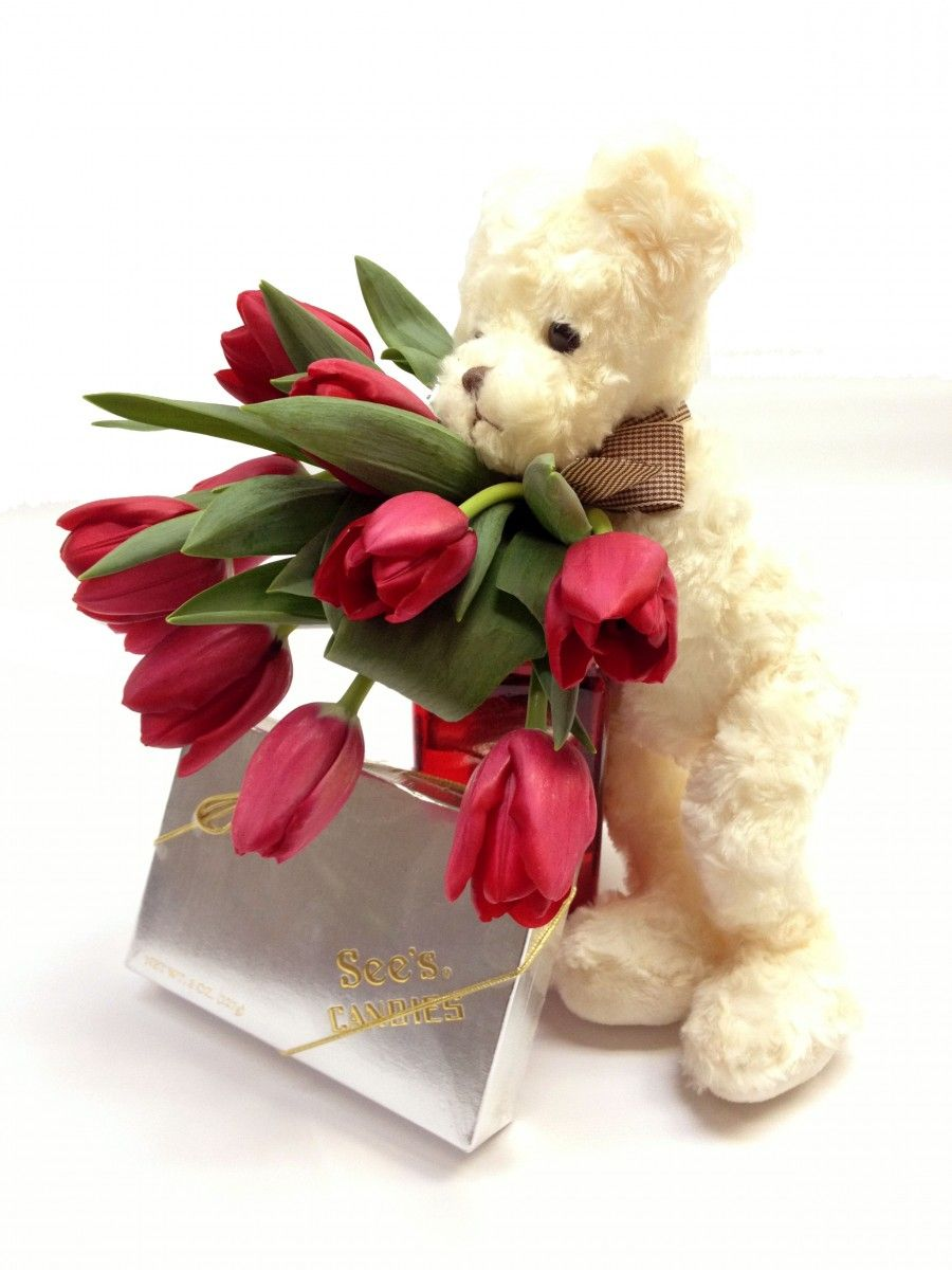 Flowers, a bear, and chocolates! One bunch of Premium Red ...
