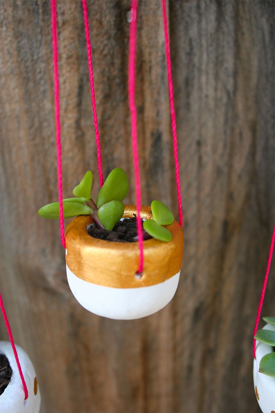 DIY Hanging Planter Diy hanging planter, Hanging