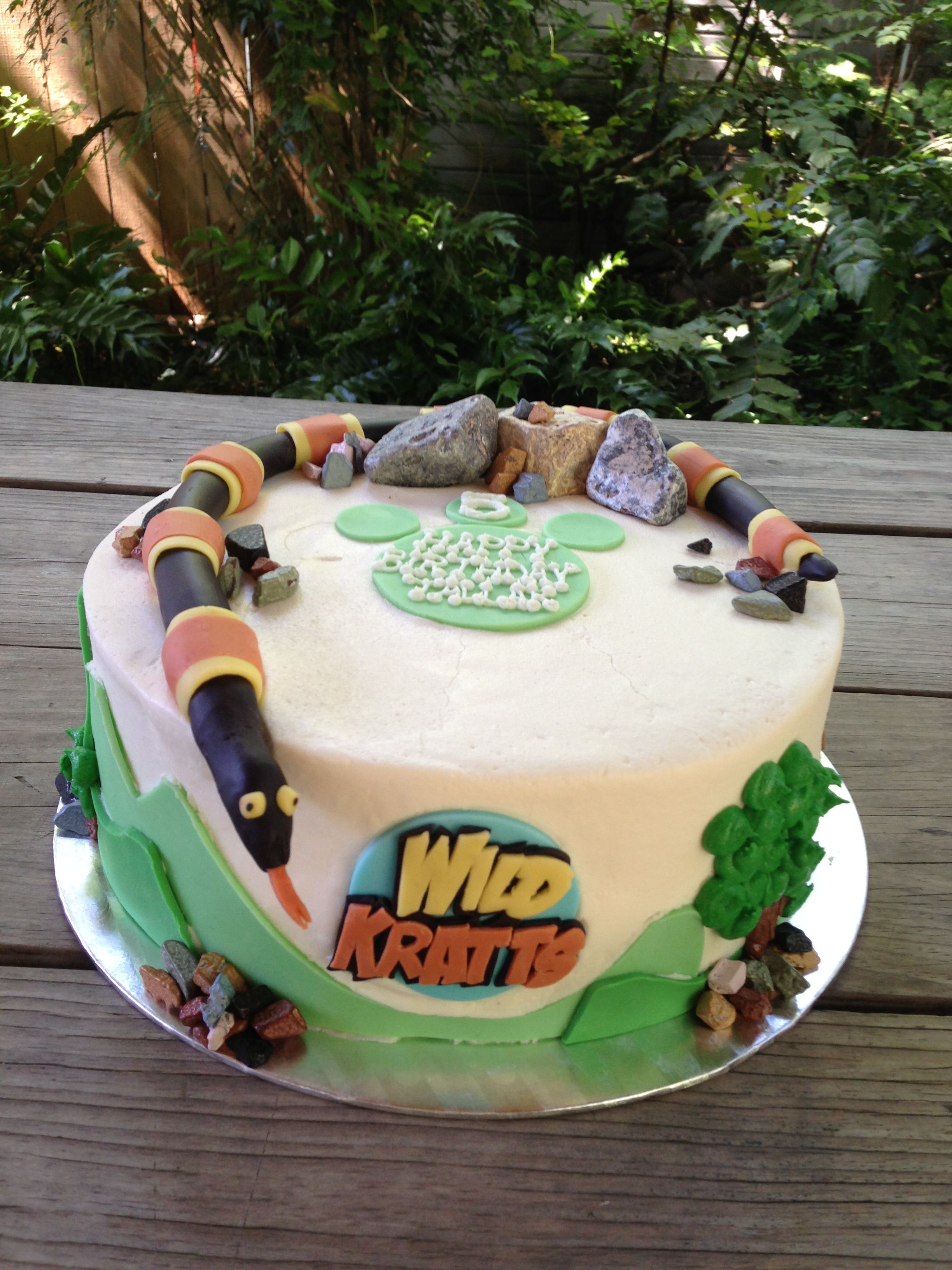 Wild Kratts Cake By Laura Louis Houston Tx