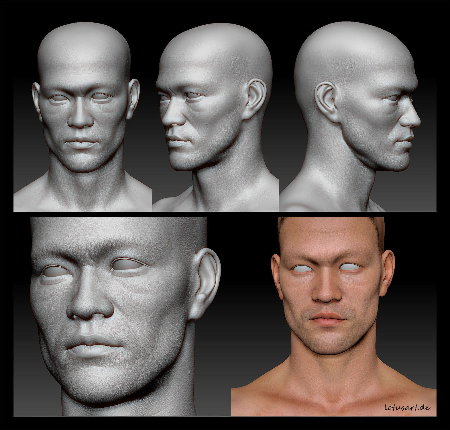 Bruce Lee Base Mesh Sculpted In 3d Using Zbrush By Lotusart Female Face Drawing Face Anatomy Digital Sculpture