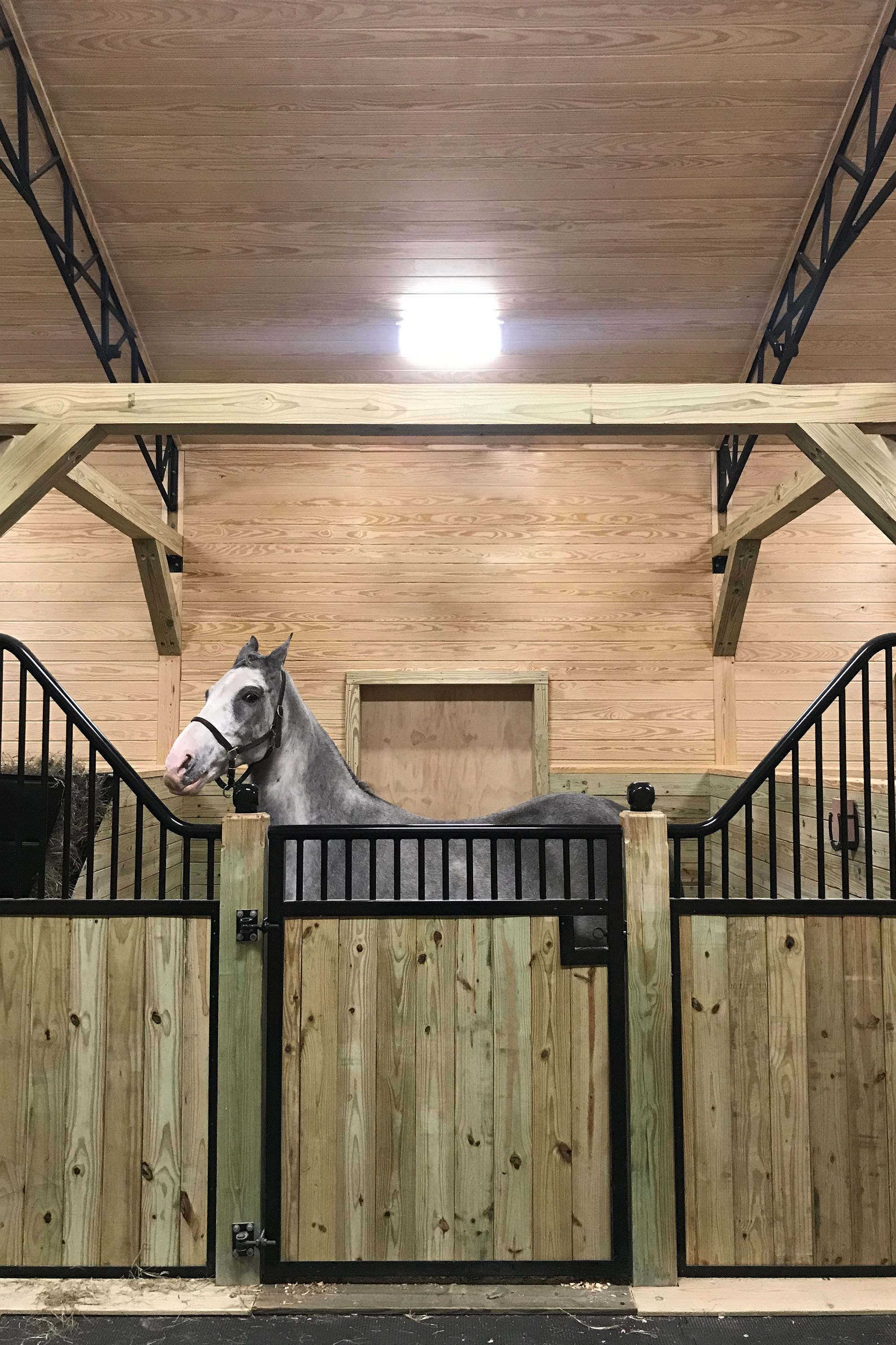 Diy Weekend Project Shetland Series Horse Stall Stall Fronts