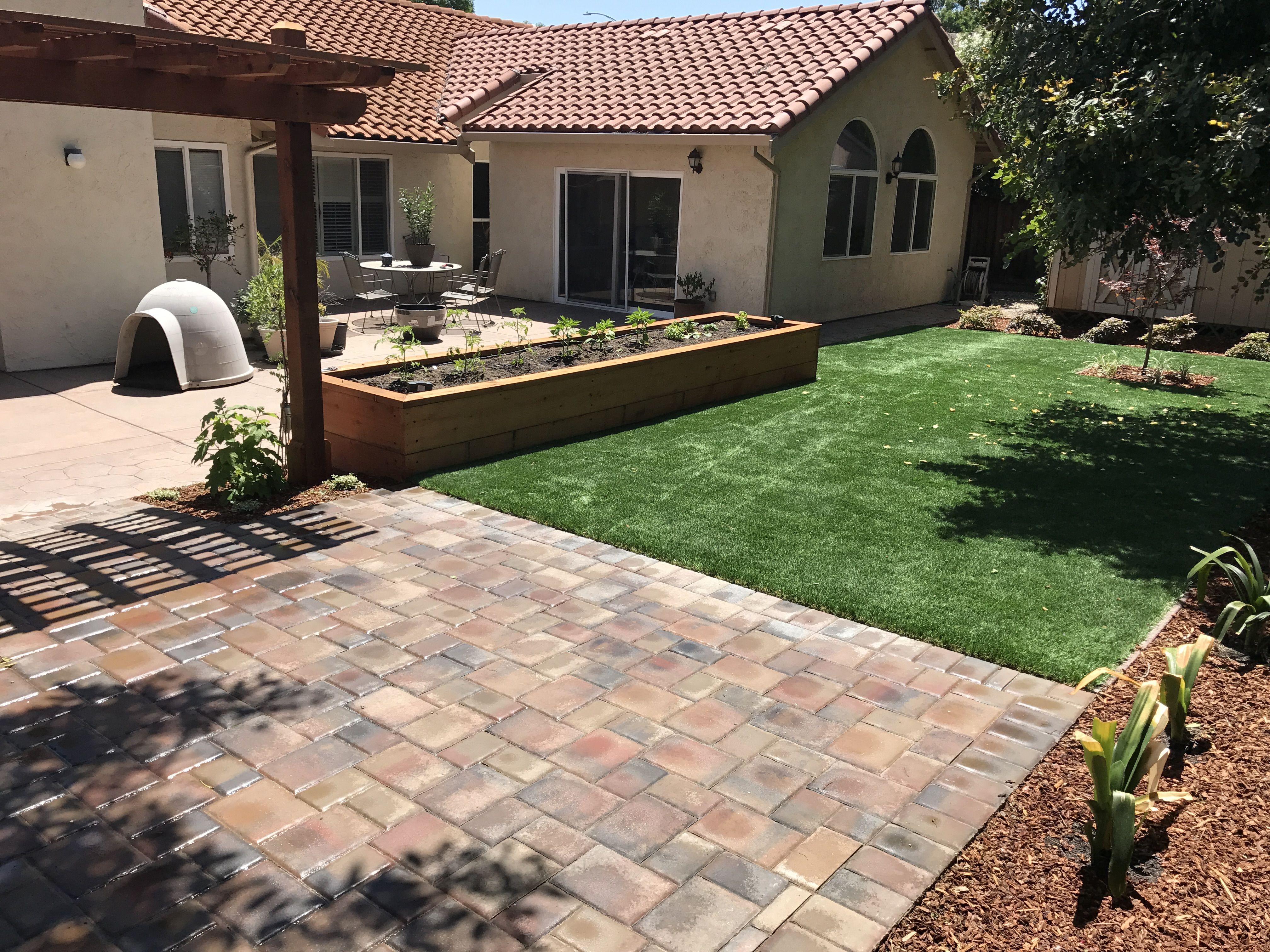 Artificial grass evergreen landscape concrete san