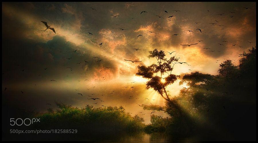 Atardecer by arleyagudelo. Please Like http://fb.me/go4photos and Follow @go4fotos Thank You. :-)