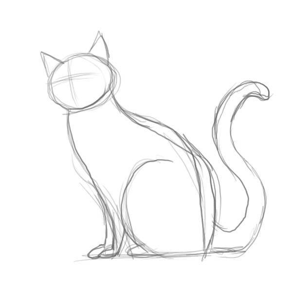 Drawing Tutorials Katze Zeichnen Skizzierung Und Tiere Zeichnen