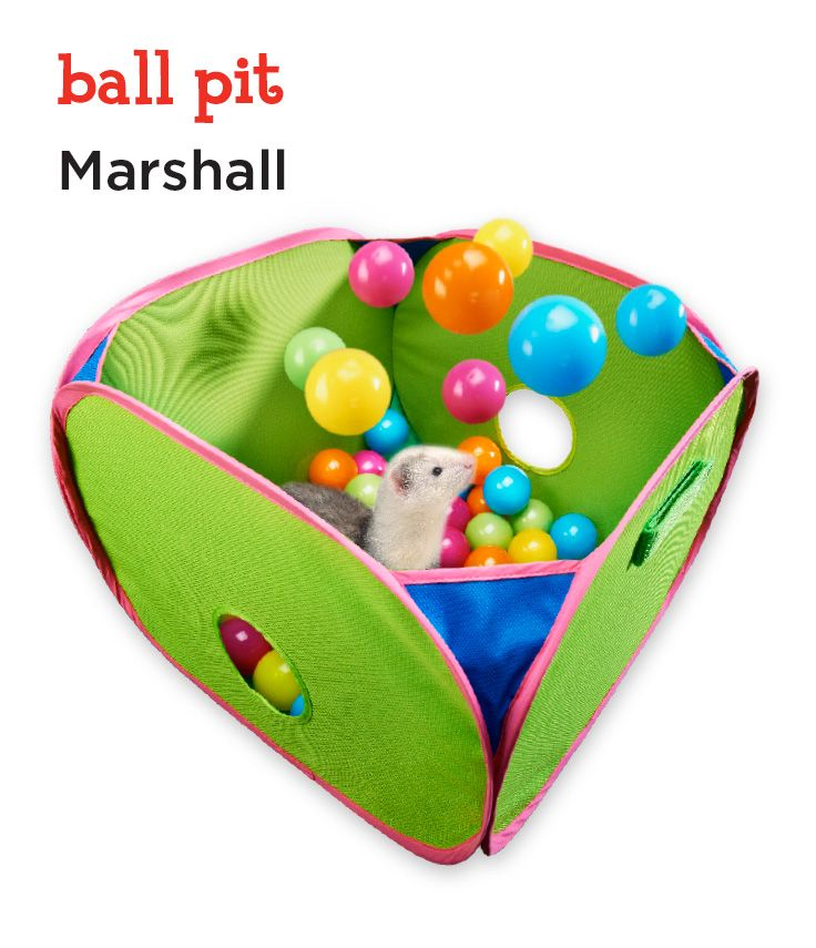 Marshall Pet Products Pop N Play Ferret Ball Pit Toy, 14