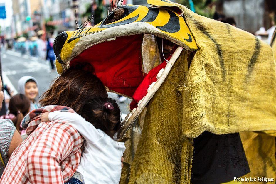 Una de los bailes tradicionales de la región de Tohoku es el 'toramai' o danza del tigre. Los espectadores buscan que el tigre les 'coma' la cabeza puesto que se cree que esto trae felicidad y salud || One of the most famous traditional dances in the Tohoku area is 'toramai' or tiger dance. Everyone watching tries to get their heads 'eaten' by the tiger as this is believed to bring happiness and health #tohoku #tiger #tigerdance #tigerdancers #toramai #hachinohe #hachinohecity…