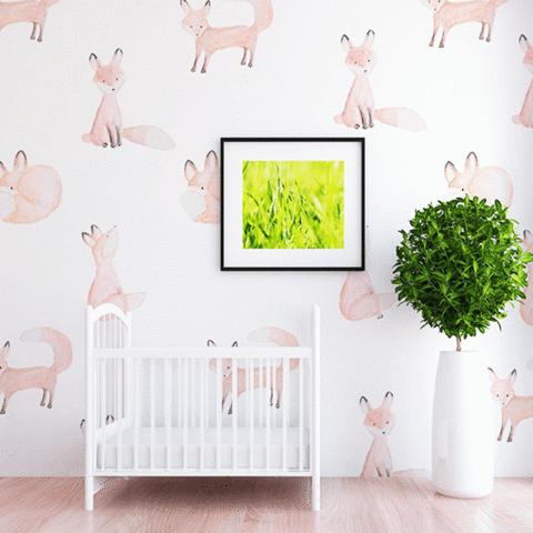 Oh Deer Wallpaper Mural Wall decals, Wall wallpaper
