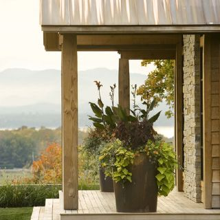 Love the pots and plants Houzz.com | Garden and Patio | Pinterest ...