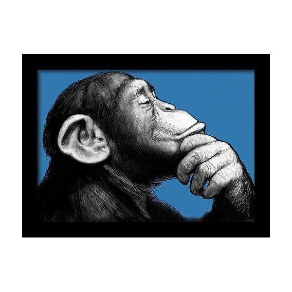 Monkey Pop Art Drawing Sketch
