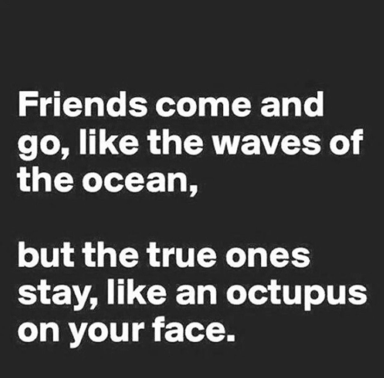 Funny Friendship Quotes Pingabrijel Gales On Quotes  Pinterest  Friendship And Wisdom
