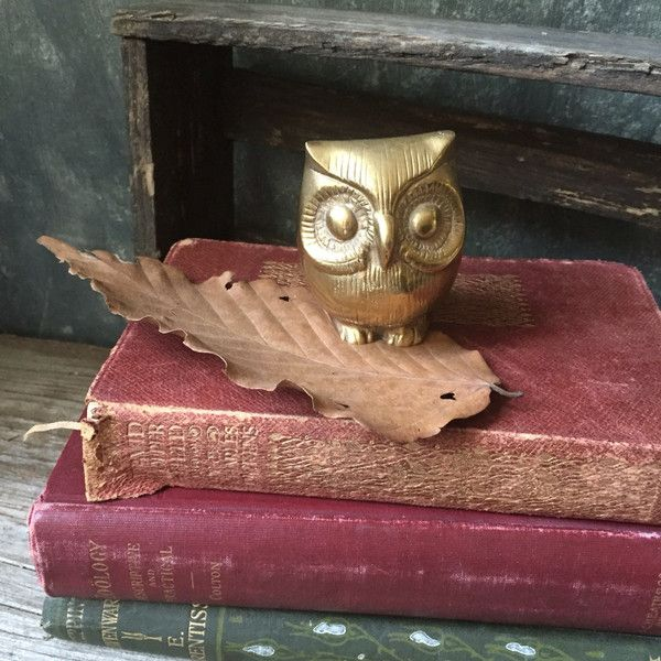 Vintage Solid Brass Owl Figurine Brass Owl Paperweight for Home or... (€22) ❤ liked on Polyvore featuring home, home decor, office accessories, owl figurines, owl figure, brass paper weight, brass paperweight and vintage paper weights