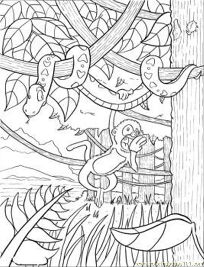 Rainforest Coloring Page With Images Jungle Coloring Pages