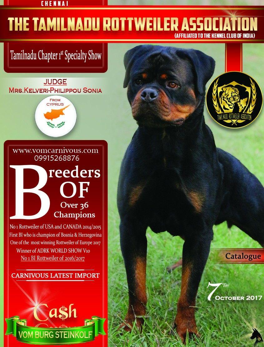 Rottweiler Specialty Rottweiler Coverpage Logo Creativebycvc
