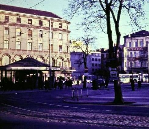 Der Pilz Konigsplatz Augsburg Pilze